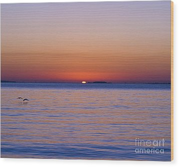 Fort Sumter Sunrise Wood Print by Al Powell Photography USA