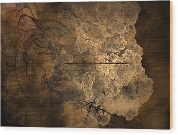 Fossilite Wood Print by Christopher Gaston