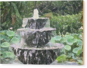 Fountain Wood Print