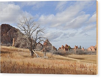 Wood Print featuring the photograph Fountain Valley by Cheryl McClure