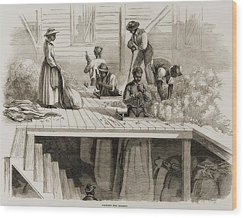 Four 1869 Illustrations Show Processing Wood Print by Everett