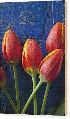 Four Orange Tulips Wood Print by Garry Gay