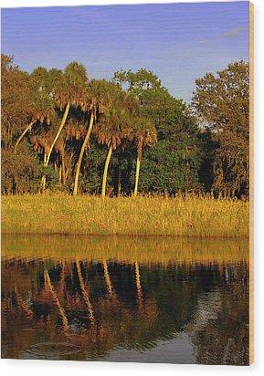 Four Palms Reflecting In Myakka Lake Wood Print