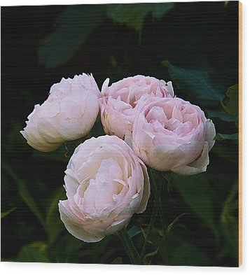 Four Roses Wood Print by Michael Friedman
