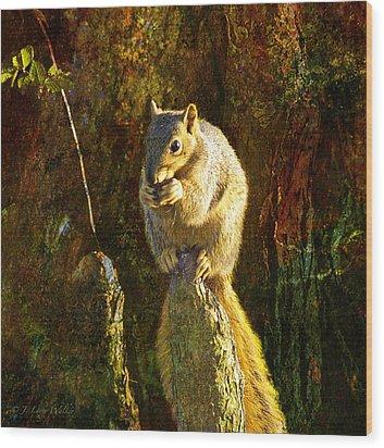 Fox Squirrel Sitting On Cypress Knee Wood Print by J Larry Walker