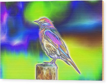 Wood Print featuring the digital art Fractal - Colorful - Western Bluebird by James Ahn