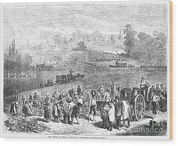 France: Wine Harvest, 1871 Wood Print by Granger