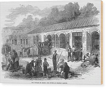 France: Winemaking, 1871 Wood Print by Granger