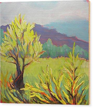 Frazier Wetland 2 Wood Print by Pam Van Londen