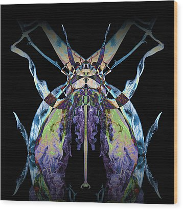 Freaky Bug Plant Wood Print by David Kleinsasser