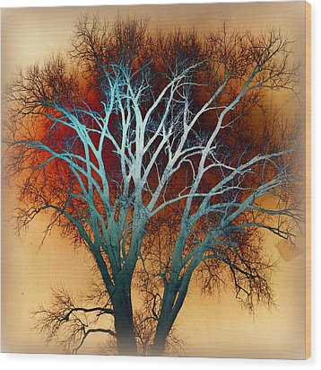 Freaky Tree 1 Wood Print by Marty Koch