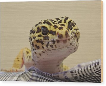 Freckles The Smiling Leopard Gecko Wood Print by Chad and Stacey Hall