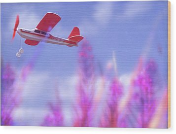 Free Flight Wood Print by Richard Piper