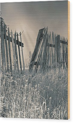 Wood Print featuring the photograph Freedom by Mary Almond