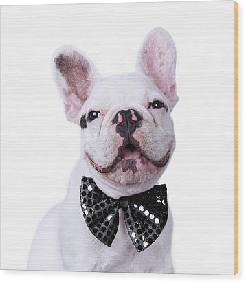 French Bulldog And Bow Tie Wood Print by Maika 777