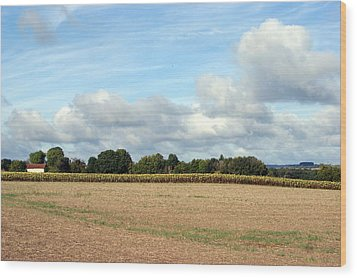 French Countryside Wood Print by Chris Boulton
