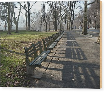 Wood Print featuring the photograph Fresco Park Benches by Sarah McKoy