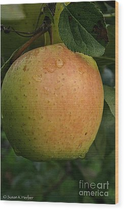 Fresh Apple Wood Print by Susan Herber