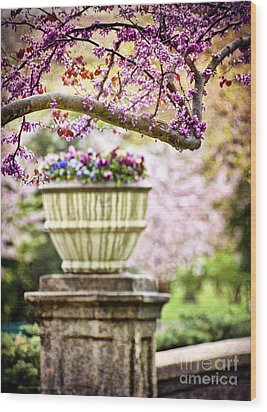 Wood Print featuring the photograph Fresh As Springtime by Cheryl Davis