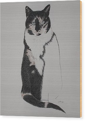 Wood Print featuring the drawing Friend II by Patsy Sharpe