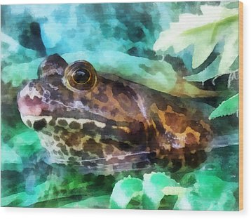 Frog Ready To Be Kissed Wood Print by Susan Savad