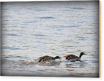 Wood Print featuring the photograph Frolicking Fun by Kathy  White