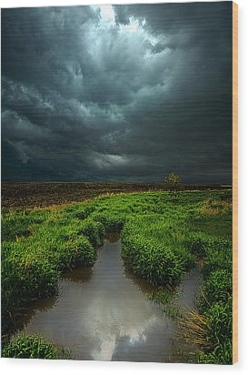 From Above Wood Print by Phil Koch