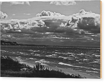 From The Beach Wood Print by Randall  Cogle
