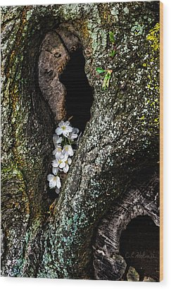 From The Heart Wood Print by Christopher Holmes