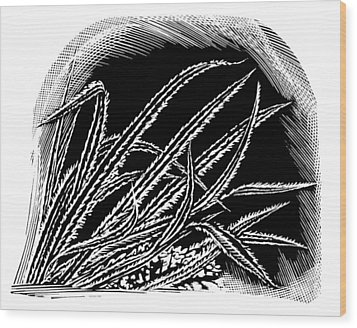 Frost On Blades Of Grass, Woodcut Wood Print by Gary Hincks
