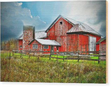 Wood Print featuring the photograph Frosted by Mary Timman
