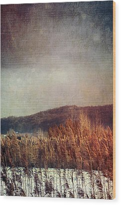 Frosty Field In Late Winter Afternoon Wood Print by Sandra Cunningham