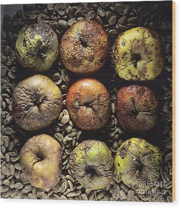 Frozen Apples Wood Print by Bernard Jaubert