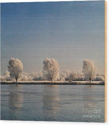 Frozen Lake Wood Print by Lyn Randle