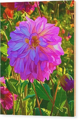 Wood Print featuring the photograph Fuchsia Delight by Ken Stanback
