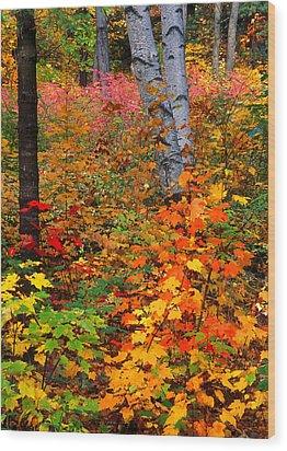 Full Fall Palette Wood Print