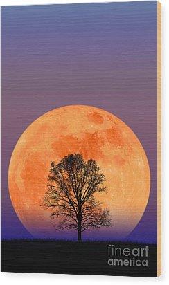Full Moon Wood Print by Larry Landolfi and Photo Researchers