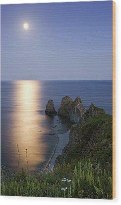 Full Moon On Cape Four Rocks Wood Print by V. Serebryanskiy