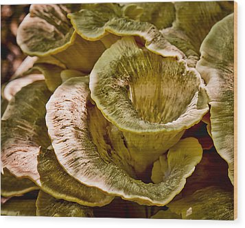 Fungus Tunnel Wood Print by Michael Putnam