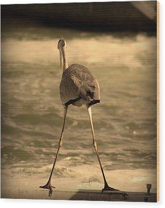 Funny Flamingo Wood Print by Radoslav Nedelchev