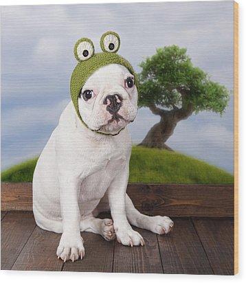 Funny French Bulldog Puppy Wood Print by Maika 777