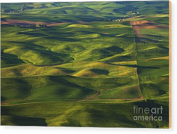 Furrows And Folds Wood Print by Mike  Dawson