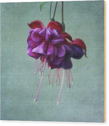 Fuschia Flower Wood Print by Kim Hojnacki