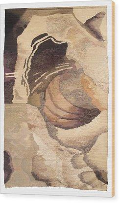 Galaxy Wood Print by Dora Stoilova Zlatan Stoilov