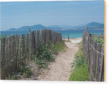 Ganivelles (fences) And Pathway To The Beach Wood Print by Alexandre Fundone