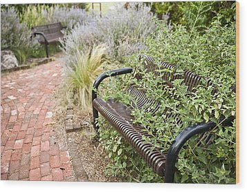 Garden Bench Wood Print by Melany Sarafis