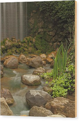 Garden Falls Wood Print by Coby Cooper