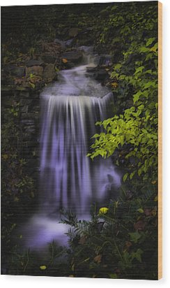Wood Print featuring the photograph Garden Falls by Lynne Jenkins