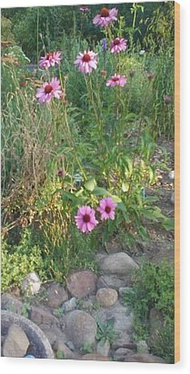 Garden Flowers And Rocks Wood Print by Thelma Harcum