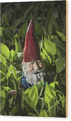 Garden Gnome No 0065 Wood Print by Randall Nyhof